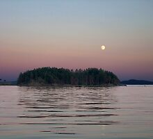 Moonlit Evening by George Cousins