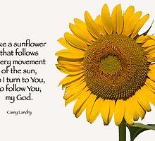 Like a sunflower . . . by Bonnie T.  Barry