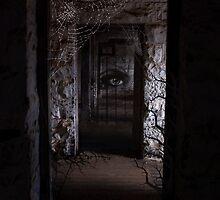 The Gatekeeper by Sue Wilson (Kane)
