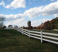 North Carolina Farm Silo Scene  by Jonathan  Green