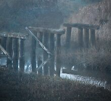 Old abandoned trolley tracks--Point Loma California by milton ginos