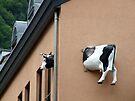 Cow House by John Douglas