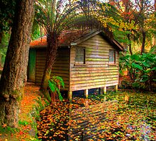 The boathouse at Alfred Nicholas Gardens, side on by Elana Bailey