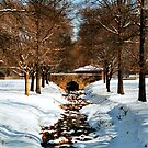 Dimmick Park, Hellertown Pa. by djphoto