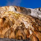 Mound Terrace at Mammoth Hot Springs by Stephen Beattie