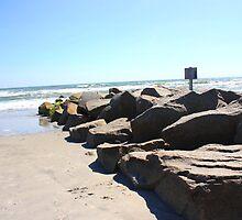 Forbidden Rocks by Stormy Brannan