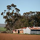 farmscapes #12, rust on tin by stickelsimages