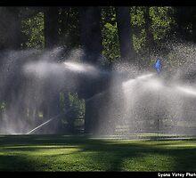Irrigation by Lyana Votey