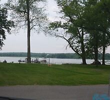Beach Front-Chippewa Lake Park-Ohio by Bea Godbee