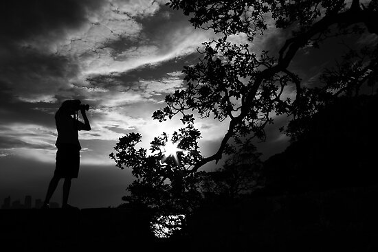 Silhouette by damienlee
