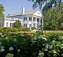 Orton Plantation by Wanda Faircloth