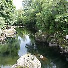Conwy river.   by ccrcats