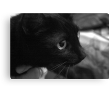 inky eye Canvas Print