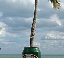 Presidente Beer in the Keys by longaray2