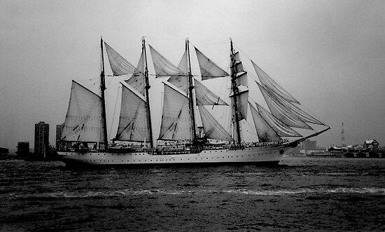 Tall Ship, Hudson River, NYC by RonnieGinnever