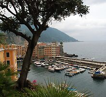 Beautiful Camogli by julie08