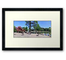 West Park, Wolverhamton Framed Print