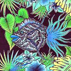 Tropical wave fish by Sarah ORourke