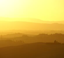 Yellow Tuscany by Sturmlechner