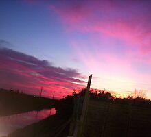 Grape fruit sunset by Adam Gordon