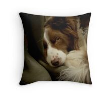 Smelly Welly Throw Pillow