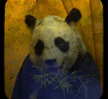 Panda by Catherine Hadler