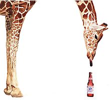 """Licker with Beer"" Giraffe Watercolor Photographic Print"