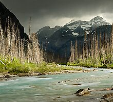 Tokkum Creek - Kootenay National Park by LukeAustin