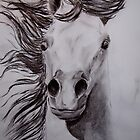 Wild Horse by Felicity Deverell