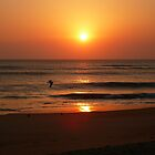 North Carolina Sunrise III by clairehogan