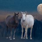 Wild Mustangs in the Night by Judson Joyce