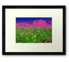 Springtime in the Rockies Framed Print