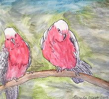 Two Galahs by Alexandra Felgate