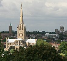Cathedrals of Norwich. by Mike Warman