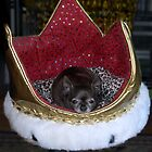Princess in Her Crown by SherylRSmith