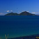 Dunk Island by Ron  Wilson