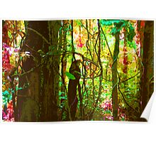 Protect Rainforests Forever Poster