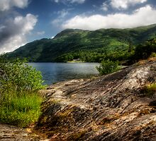 Rowardennan Rocks by Linda  Morrison