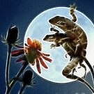 Lizards Gone Wild by Donna Adamski