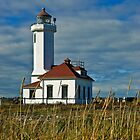 Point Wilson Lighthouse and Grassy Foreground by Jeff Goulden