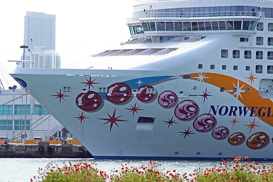 Cruise Ship Miami Port by longaray2