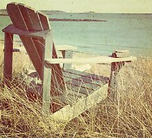 The chair by SylviaCook