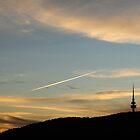 Canberra Tower by Alex Woolfenden