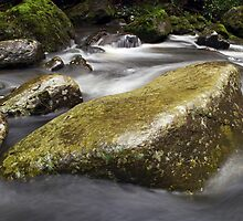 Island in the stream  by Stephen Colquitt