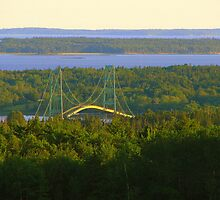 Deer Isle-Stonington Bridge by Patty Gross