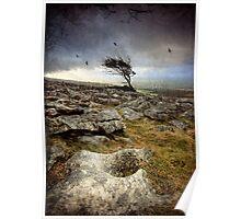 Storm Tree Poster