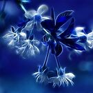 Cherry Blossoms in Blue by Sandy Keeton