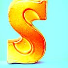 """S"" by Hilary Walker"