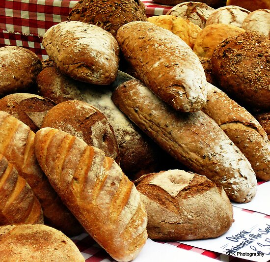 Our Daily Bread by Susan E. King