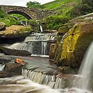Three Shires Head by Steve  Liptrot